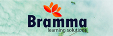 Bramma Learning Solutions: The Business Make Over Maverick