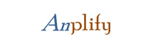 Anplify Services: Providing Execution Support for M&A and Investment Banking