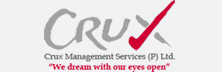 Crux Management: Collaborating Innovation and Strategy to enhance Value