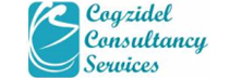 Cogzidel Consultancy Services: Creating Accounting and Other Business Advisory Solutions for Entrepreneur