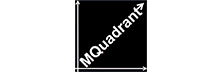 MQuadrant:  Redesigning Business for Growth, Profitability and Efficiency