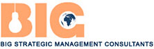 Big Strategic Management Consultants: Strategy Consulting to Business Success