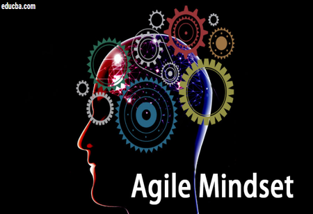 Why should the Leaders have an agile mindset?