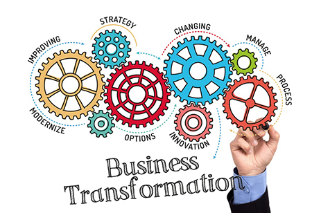 Role of Executive Consultants in Business Transformation