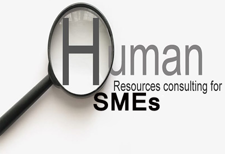 How HR Consultants Can Drive Business Success For SMEs