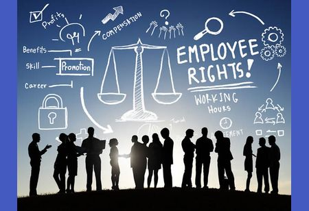 Why Labour Law Consultants are Important for Your Business