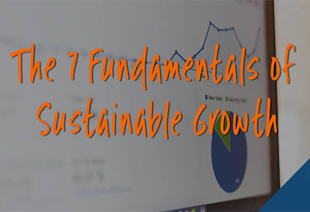Fundamentals Of Sustainable Business Growth